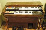 Thumbnail for Vital Organ
