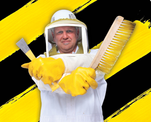 Thumbnail for The Bee Team