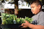 Thumbnail for La Mesa Verde Brings Healthy Food to Low-Income Familes
