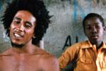 Thumbnail for Reggae Royalty
