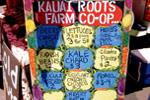 Thumbnail for Just Ask Kauai