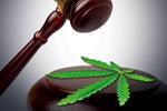 Thumbnail for Cannabis Court