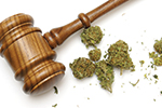 Thumbnail for Pot Law Heads to Ballot