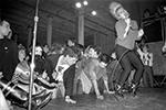 Thumbnail for Punk Rock Picture Show