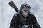 Thumbnail for Ape-pocalypse