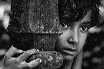 Thumbnail for Pather Panchali
